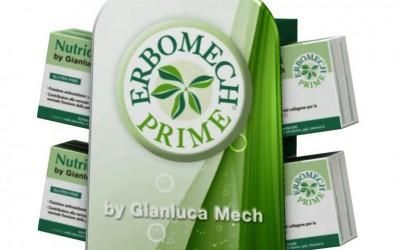 Erbomech